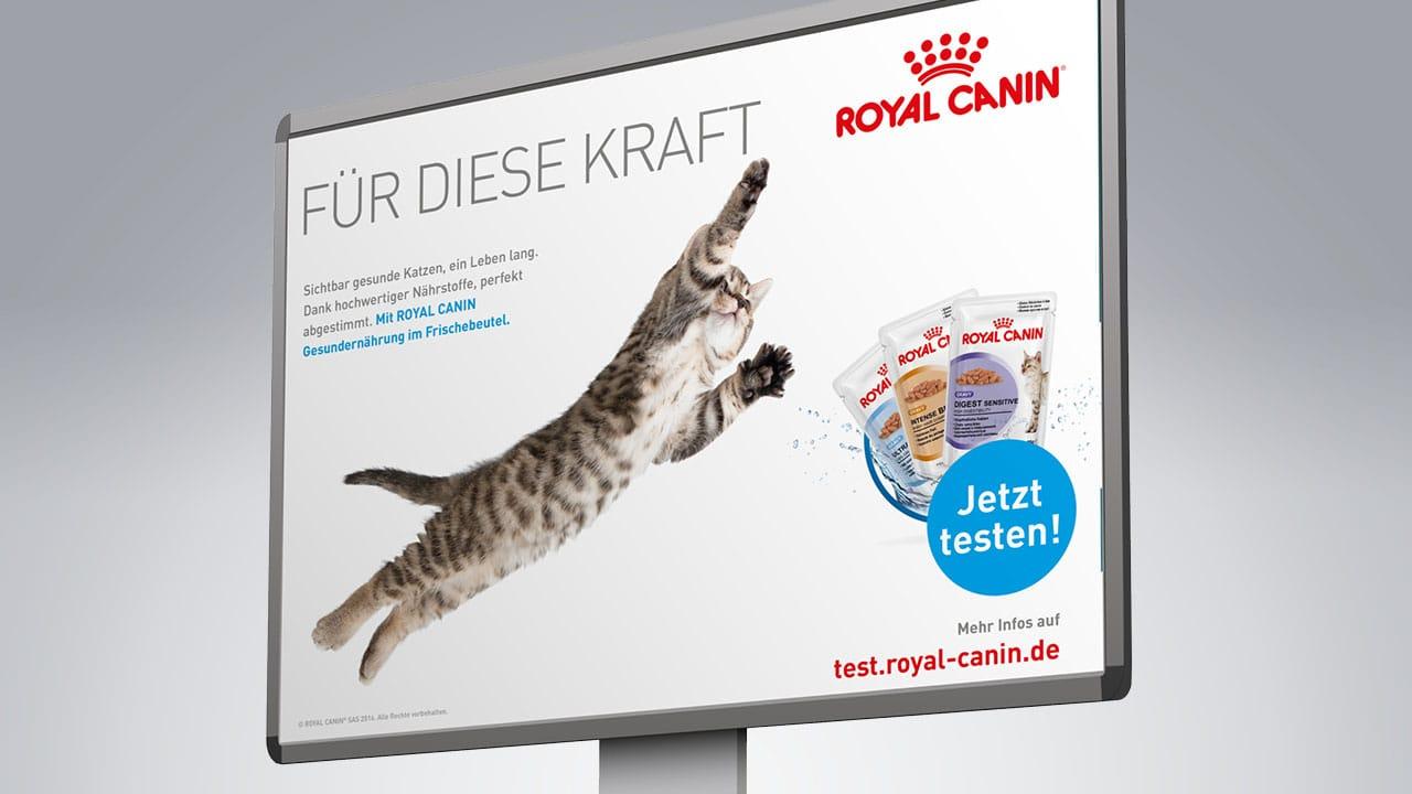 Royal Canin - werbeagentur aus Aachen